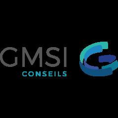 GMSI Conseils