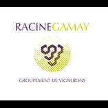 Racine Gamay – vignerons
